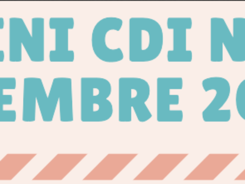 Mini CDI N°2 – Décembre 2020
