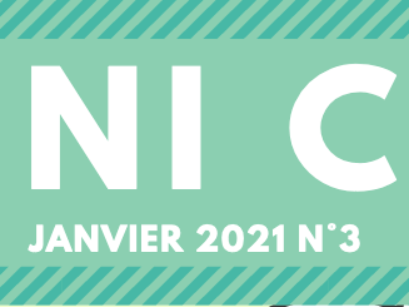 Mini CDI n°3 – Janvier 2021